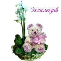 """Игрушка из живых цветов """"Игрушка с орхидеей"""""""